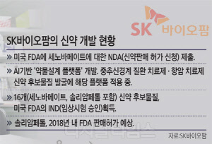 SK바이오팜 13년 공들인 신약  美 판매 신청